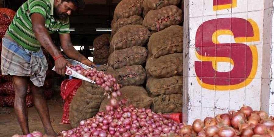 onion Price