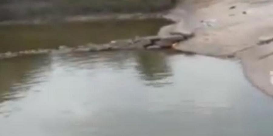 Five of a family drown in Siddarabetta Kalyani in Tumkur