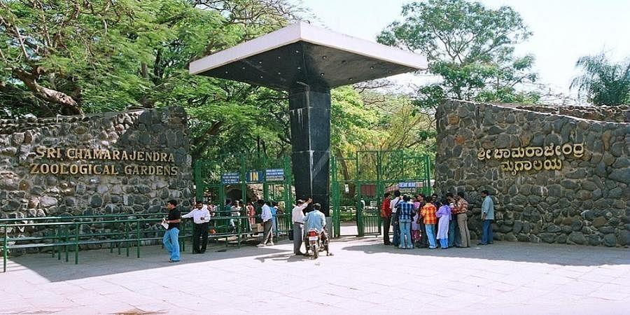 Mysuru Zoo entry fee hiked