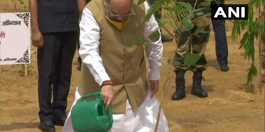 Union Home Minister Amit Shah participates in the 'All India Tree Plantation Campaign'