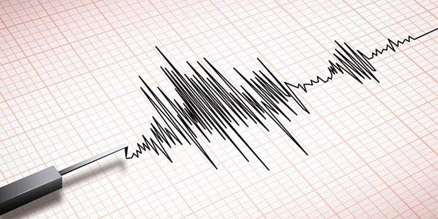 Earthquake Creates Fear In KR Pet Villagers
