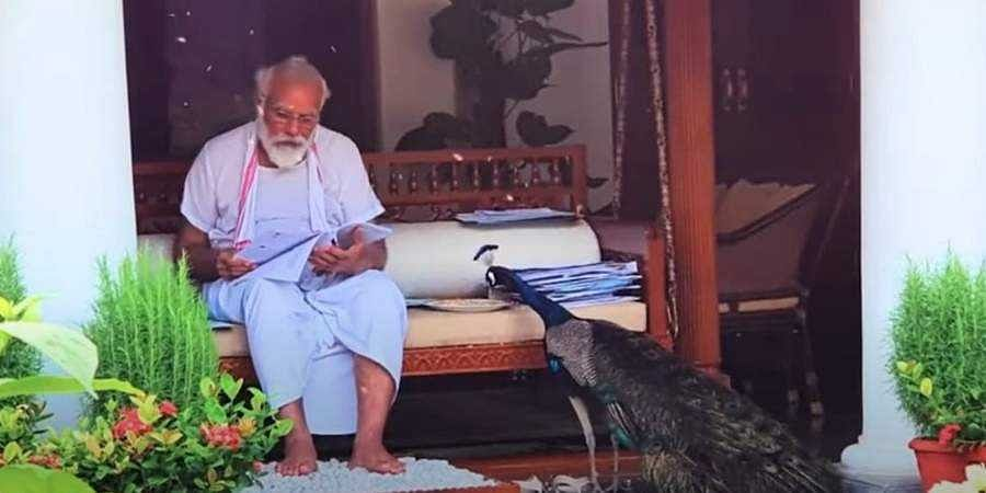 Precious moments of PM Modi feeding Peacocks at residence