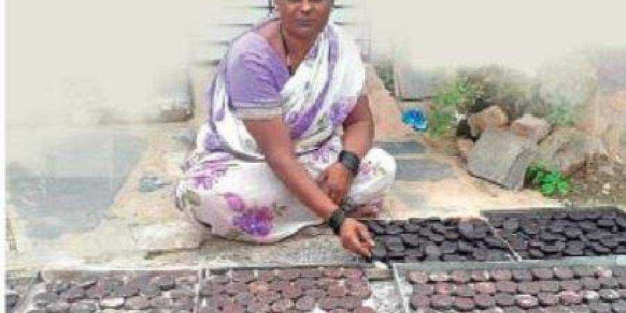 Parvatibai works with cakes of catechu spread out in front of her house