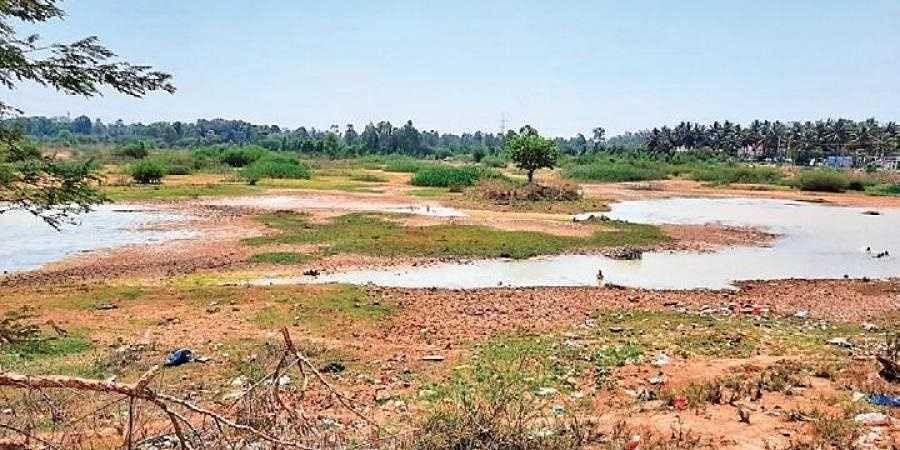 The Halanayakanahalli Lake